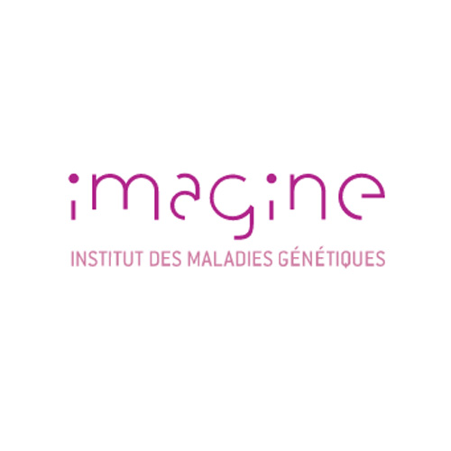 Imagine Institute